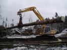 Forstarbeiten/Windbruch_12
